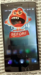 OnePlus One Replacement Screen